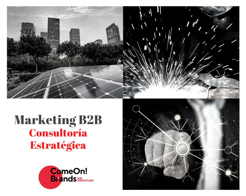 Consultoria Estrategica MARKETING b2b